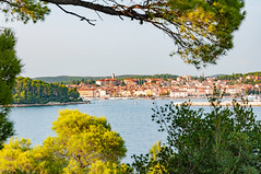 _DSC2202.jpg (matipl) Tags: trees adriatic oldtown istria bay rovinj bushes fromhiding croatia europe hrvatska sea istriacounty hr