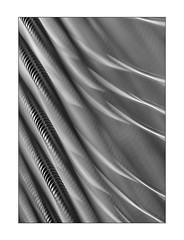 the smell of Escher's piano (Armin Fuchs) Tags: arminfuchs piano grandpiano strings diagonal macro blur pianostrings