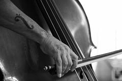 Strings (Rafael Peñaloza) Tags: roccellajonica roccella roccellajazz aldovigorito contrabasso contrabajo musica music strings tattoo byn bw play arm lines instrument