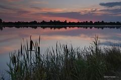 Matin (jpto_55) Tags: paysage matin lac étang reflet xe1 fuji fujifilm fujixf1855mmf284r hautegaronne france