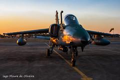 FAB AMX-1 (iagow) Tags: fab amx embraer amxa1 amx1 baan sban ala1 ala2