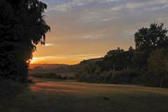 Low Light (Deepgreen2009) Tags: golden glow low light gilded west home garden