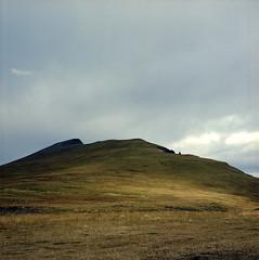 sun on the slope (lawatt) Tags: reyjaneshryna hill slope pasture sunlight sky reykjanes árneshreppur westfjords iceland film 120 portra 400 hasselblad 80mm