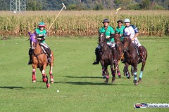 am_polo_cup18_0365 (bayernwelle) Tags: amateur polo cup gut ising september 2018 chiemgau bayern oberbayern pferd pferdesport reiter bayernwelle foto fotos oudoor game horse bavaria international reitsport event sommer herbst