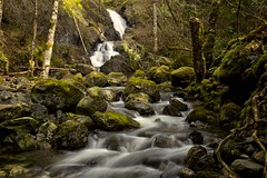 Where your main roots run. (chris.ph) Tags: waterfall forest longexposure water rocks roots landscape sooke britishcolumbia canon6d ef24105mmf4lisusm
