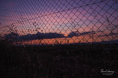 _MG_2932 - e (Daniel Jiménez Fotógrafo) Tags: atardecer getdark landscape lateafternoon building tarde sun sunset color artistic pretty natural green plant arbol sky cielo cloud clouds nube danifotografia danieljimenezfotowixcomportfolio danieljg madrid spain city town españa contraluz backlight