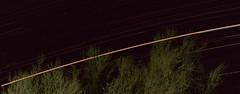 Mars skimming the treetops, Tucson Ariona, August 27 2018 (Distraction Limited) Tags: mars planets tucson arizona