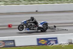 Crazy Fast (david.horst.7) Tags: harley harleydavidson bike motorcycle race racing drag dragrace dragstrip dragway raceway indy nitro