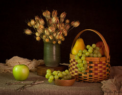 Still life fruit basket (Phyllis Freels) Tags: phyllisfreels apple basket brown driedflowers grapeshears grapes green loveinthemist nigella pear pottery stilllife vase wood