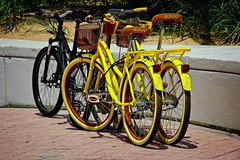 Beach Bikes 88 (LarryJay99 ) Tags: 2018 beach streets people ftlauderdale ocean atlanticocean bikes bicycle bikeculture yellow retail baskets pattern textures bluesky sky seawall