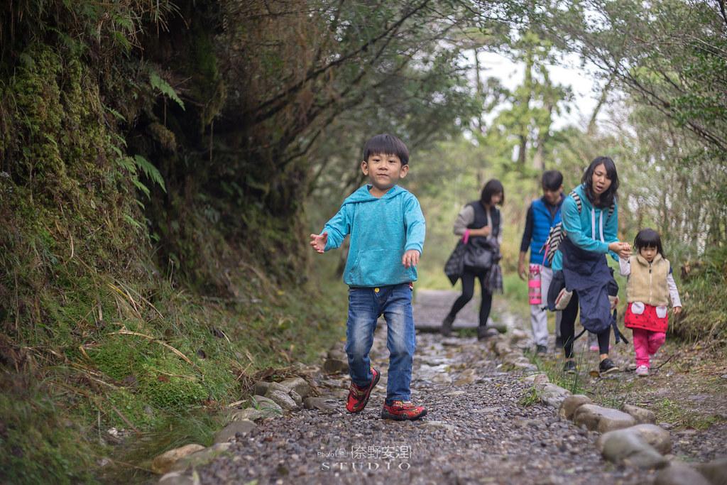 太平山翠峰湖環山步道 |走在泥濘的道路上,只為途中美景 | 宜蘭大同鄉19