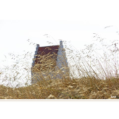 Den tilsandende Kirke (horstmall) Tags: kirche church église sand dune düne wanderdüne flugsand sable sableux ostsee balticsea skagerrak skagen dänemark danmark gras grass versandet sandy sunken versunken disappeared verschwunden horstmall