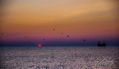 IN ADDRESS ... TO THE SUN (TONY-BUENO - Barcelona) Tags: canon eos 35350 35350ef3556 almeria amanecer carboneras cabodegata sunrise sea sun sol mar ocean oceano barco boat