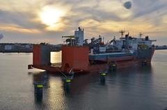 Black Marlin + Giulio Verne (Hugo Sluimer) Tags: delandtong landtongrozenburg landtong portofrotterdam port haven rozenburg nederland holland zuidholland nlrtm onzehaven