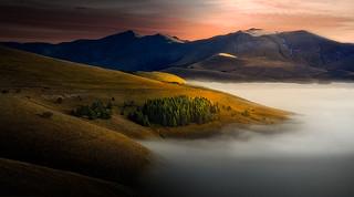 Golden hills.