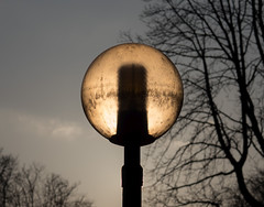 Light catcher (Lumen Candela) Tags: tree lamp sunlight afternoon berlin germany winter lampe sonne nachmittag