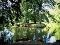 The Gardens Of Lednice Castle (kurtwolf303) Tags: trees bäume lednice water wasser reflections spiegelungen wood holz see lednicecastle park czechrepublic tschechien schlosslednice kurtwolf303 olympusem1 omd mft microfourthirds micro43 felsen rocks