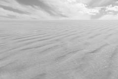 A Whiteout (TheExplorographer.com) Tags: desert dunes nm photography wasteland whitesands wind adwheeler arcanumcali explore gypsum misslerange nationalmonument newmexico sony sonyalpha sonyalphauniverse sonyimages travel