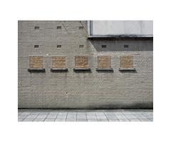 brick windows (chrisinplymouth) Tags: wall brick plymouth devon england uk city cw69x xg wb 2017 englishbond