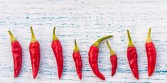 Chili #2420 (Explore) (svenpetersen1965) Tags: chili hot macro red capsaicin wood schabby backdrop vegetable fruit