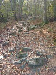 Wieżyca (nesihonsu) Tags: sudeticforeland poland polska przedgórzesudeckie przyrodapolska lowersilesia dolnyśląsk dolnośląskie masywślęży foresudeticblock wieżyca geology geologia geoturystyka geologyofpoland geotourism
