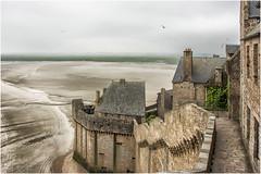 Mont-Saint-Michel , Il giro delle mura ... (miriam ulivi) Tags: miriamulivi nikond7200 normandia montstmichel france abbaziadimontsaintmichel dentrolemura insidethewalls baia bassamarea bay lowtide gabbiani seagulls