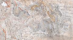 2018/07/09 13h09 mosaïque des Néréides (détail), Volubilis (Valéry Hugotte) Tags: 24105 maroc néréides volubilis canon canon5d canon5dmarkiv monstre monstremarin mosaïque mosaïquedesnéréides néréide palmier ruines fèsmeknès ma