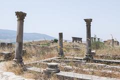 2018/07/09 13h03 ruines de Volubilis (Valéry Hugotte) Tags: 24105 antiquité maroc volubilis canon canon5d canon5dmarkiv colonne romain ruines fèsmeknès ma
