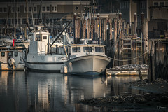 Milford Harbor (TP17) Tags: connecticut milford harbor sea water boats summer tompiorkowski fujix