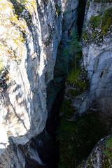 _DSC0627 (marcella.cavelli) Tags: canada britishcolumbia alberta squamish whistler banff jasper clearwater sky falls tree hike hiking trail trip snow lake wood ab bc