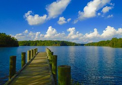 Diascund Resevoir 3 (r.w.dawson) Tags: jamescitycounty virginia va usa waterway landscape lake resevoir diascundresevoir clouds