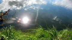 DSCN5230 nature paysage 43 (lac reflets du soleil traveling 2sur2) Vallières (jeanchristophelenglet) Tags: santeuilfranceétangdevallière nature natureza paysage landscape paisagem reflet reflection reflexo