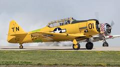 N66WP T-6G Texan (Anhedral) Tags: airventure2018 oshkosh osh kosh airshow airplane n66wp northamerican t6 texan harvard
