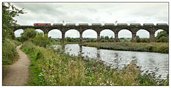 The Towpath Tug (david.hayes77) Tags: 60059 class60 tug db dbcargo cheshire duttonviaduct riverweaver actonbridge 2018 6h02 freight towpath wcml westcoastmainline