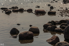 Kivet (jsyrjl) Tags: kivet ranta ruissalo turku