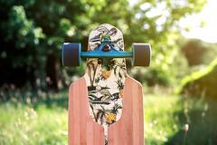 Sea, Skate & Sun (Hëllø i'm Wild) Tags: analog film 35mm canonae1 kodakgold200 summer skateboard longboard dusterscalifornia bokeh dof nature