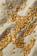 Organic Toasted Sesame Seeds (brent.hofacker) Tags: agriculture asia asian background cereal condiment cooking crop cuisine culture diet dry food grain health healthy heap herb ingredient japanese kitchen natural nutrition oil organic pattern pile plant roasted seasoning seed sesame sesameseed sesameseeds spice stack texture toasted toastedsesameseed toastedsesameseeds vegetarian