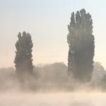 Brume matinale sur la Seine thumbnail