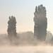 Brume matinale sur la Seine