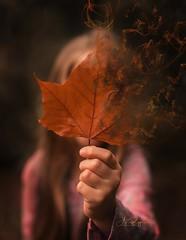Magical Autumn (agirygula) Tags: magic magical leave hand fall autumn family portraiture picoftheday creativeshot creative creativephotography moody mood longhair witch wicca creativetones