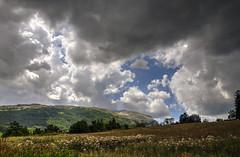 I miss the Wild (Lolo_) Tags: champ dévoluy hautesalpes agnières france montagne paysage fleurs flowers clouds nuages