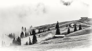 Lerchkogelalmen, Karwendel