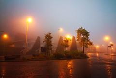 Misty Morning, Blaenau Ffestiniog, Gwynedd,North Wales (uk_dreamer) Tags: morning mist misty fog light lights town reflections wet shine shiny rain weather wales cymru gwynedd blaenau ffestiniog reflection reflected