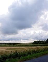 Felder (Irgendeine87) Tags: wiese felder deich wolken regen nordsee nordfriesland