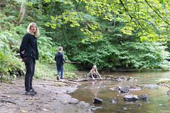 DalkeithCountryPark-18082576 (Lee Live: Photographer (Personal)) Tags: 30mm buildingbridges childrenplaying dc dalheith f14 fortdouglas knights leelive logging northeskriver ourdreamphotography planks playinginastream riverdamming rocks sigma sigma33b965 slides southeskriver water adventurers climbingwalls pirates princesses suspensionbridges treehouses turretedtreehouses wwwourdreamphotographycom