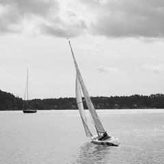 P8250617 (svensmail) Tags: segling bw svartvit sailingboat sailing segelbåt