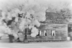 Independence Hall, birthplace of Texas Independence from Mexico #2 (Richard Denney) Tags: washingtononthebrazos historic texasstatehistoricsite infraredhoyar82 blackandwhite monochrome blur old buildings abandoned ruins ghosttown history impressionistic pictorialism