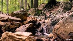 Source de la géronster, Spa (01) (Lцdо\/іс) Tags: spa géronster source nature belgique belgium belgie beauty forêt forest travel water lцdоіс septembre september 2018 explore