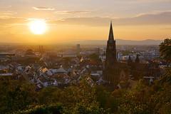 Klassiker (ploh1) Tags: freiburg freiburgermünster kirche stadtansicht ausblick aussicht gegenlicht altstadt schöneswetter sommer architektur historischesbauwerk sehenswürdigkeit wahrzeichen religion glaube