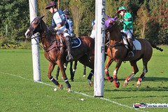 am_polo_cup18_0412 (bayernwelle) Tags: amateur polo cup gut ising september 2018 chiemgau bayern oberbayern pferd pferdesport reiter bayernwelle foto fotos oudoor game horse bavaria international reitsport event sommer herbst